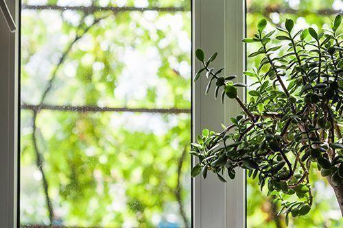 ventanas outblock